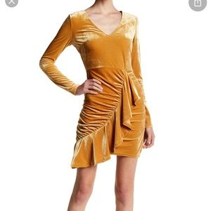 Velvet dress NWT